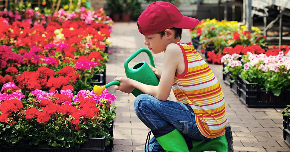 Faire au jardin en septembre activit s de jardinage pour enfants educatout - Que faire au jardin en septembre ...