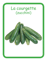 Éduc-affiche-La courgette (zucchini)