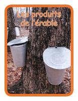 Éduc-affiche-Les produits de l'érable