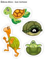 Éduca-déco–Les tortues