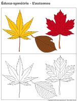 Éduca-symétrie-L'automne