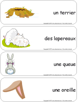 Étiquette-mots-géants - Les lapins