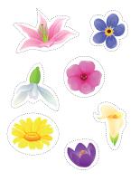Modèles de fleurs