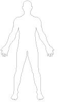 Pochoirs-Le corps humain