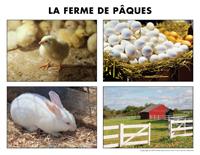 Poni découvre et présente-La ferme de Pâques