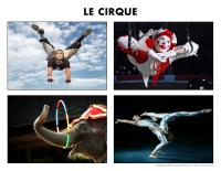 Poni découvre et présente-Le cirque
