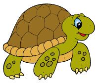 """Résultat de recherche d'images pour """"famille tortues dessin"""""""