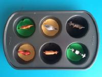 25 idées de choses à faire avec un moule à muffins-2