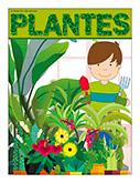 Plantes - NOUVEAUTÉS 2020