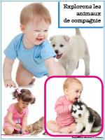 Affiche thématique poupons-Explorons les animaux de compagnie
