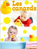 Affiche thématique poupons-Les canard