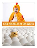 Affiche thematique poupons-Les oiseaux et les oeufs
