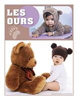 Affiche thématique poupons-Les ours
