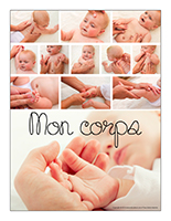 Affiche-thematique-poupons-Mon corps