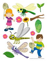 Autocollants-Les libellules
