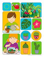 Autocollants-Plantes