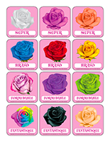 La Saint Valentin Les Roses Activites Pour Enfants Educatout