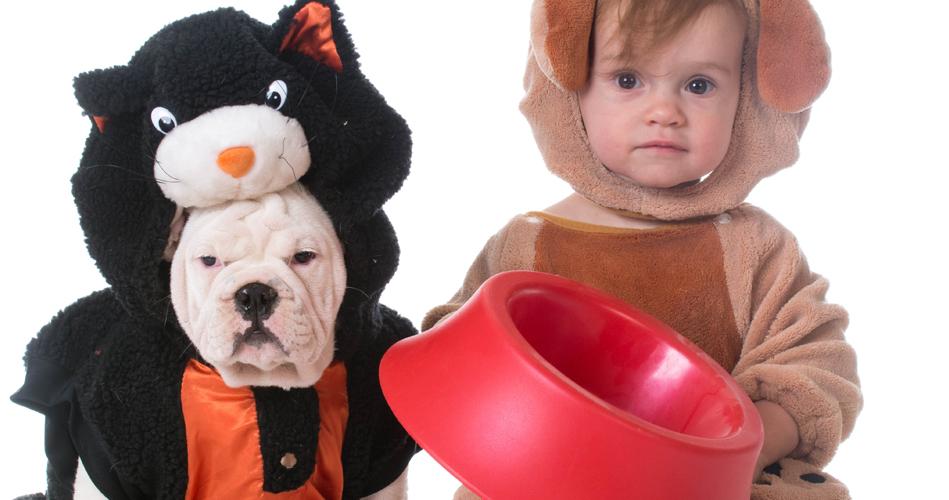 bol pour chiens en peluche bricolage pour enfants educatout. Black Bedroom Furniture Sets. Home Design Ideas