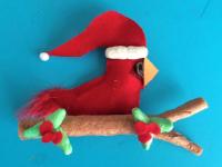 Cardinal de Noël-11