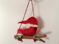 Cardinal de Noël-12
