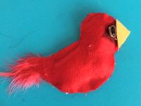 Cardinal de Noël-8