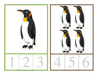 Cartes à compter-Animaux polaires-1
