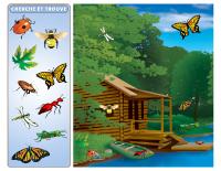 Cherche et trouve - Insectes