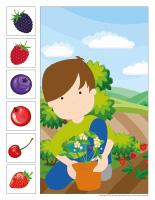 Cherche et trouve-Petits fruits