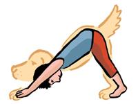 Chien-yoga