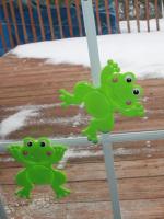 Des grenouilles à ma fenêtre-4