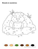 Dessin à Numéros-Jour de la marmotte