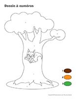 Les Ecureuils Activites Pour Enfants Educatout