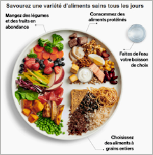 Dossier-Le Guide alimentaire canadien version 2019