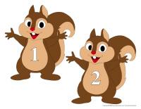 Écureuils à nourrir