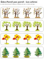 Éduc-Pareil pas pareil-Les arbres