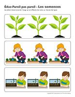 Éduc-Pareil pas pareil-Les semences