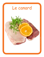 Éduc-affiche-Le canard