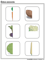 Éduc-associe-les légumes