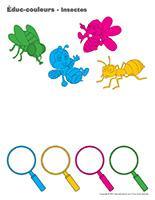 Éduc-couleurs-Insectes