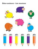 Éduc-couleurs-Les moutons