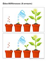 Éduc-différences-Les semences
