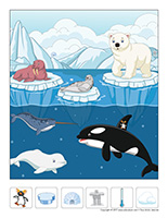 Éduc-intrus-Le monde polaire