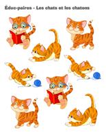 Éduc-paires-Les chats et les chatons
