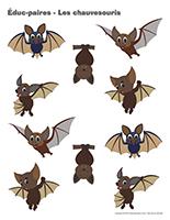 Éduc-paires-Les chauvesouris