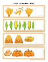 Éduc-série-Récoltes