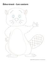Éduc-tracé-Les castors