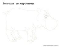 Éduc-tracé-Les hippopotames