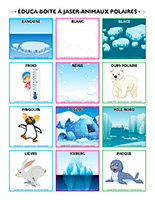 Éduca-boite à jaser-Animaux polaires