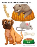 Éduca-déco-Animaux domestiques-1