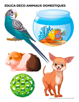 Éduca-déco-Animaux domestiques-2